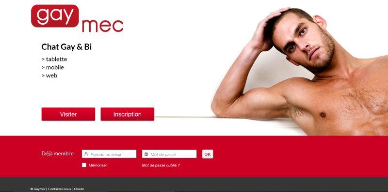 GayMec - Test, Avis et Critique